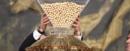 Lotería 2015: el mayor premio es compartirlo, pero con Hacienda... que recaudará 188 millones de euros