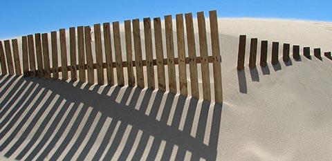 Foto tomada de internet: www.javinavarro.es