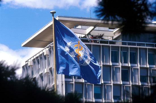 El futuro de la Organización Mundial de la Salud (OMS ...