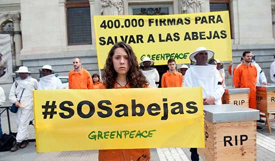 Fotos: Greenpeace