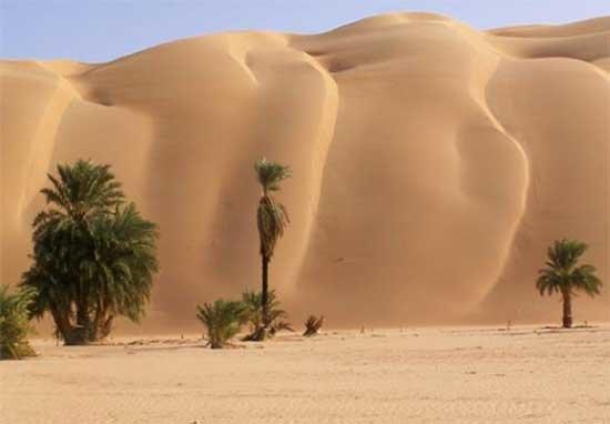 Resultado de imagen de Se explota oro en la zona de Red Back Mining mauritania