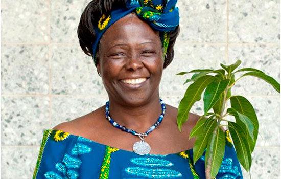 África y la mujer árbol