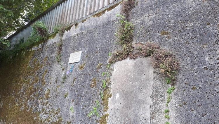 muro cementerio canido